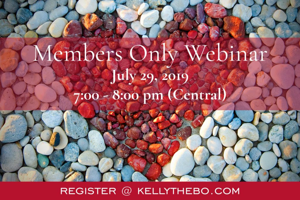 July 29, 2019 Members Only Webinar
